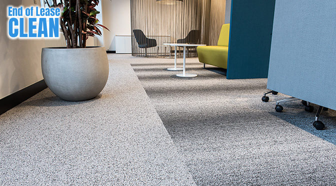 HOW OFTEN SHOULD YOU CLEAN YOUR OFFICE CARPET?